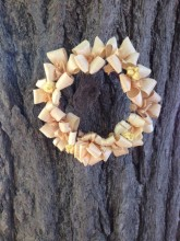 イチョウの木にリース